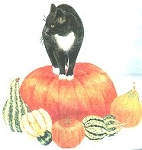 Cat Flour Sack Towel, Cat And Pumpkin