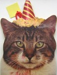 Cat Gift Bag, Birthday Cat