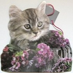 Cat Gift Bag, Grey Kitten