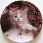 Collectible Cat Plate, Fluff And Flowers