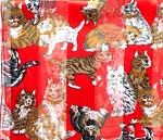 Cat Scarf, Red, Square