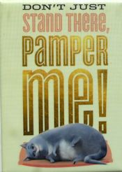 Collectible Cat Magnet, Pamper Me