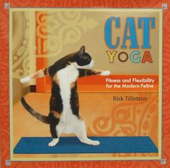 Collectible Cat Book, Cat Yoga