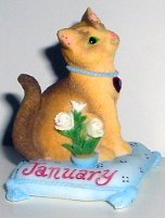 Collectible Calico Kitten, January
