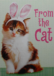 Cat Easter Card, From The Cat