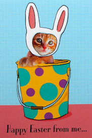 Cat Easter Card, From Me