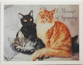 Cat Sympathy Card, A Message Of Sympathy