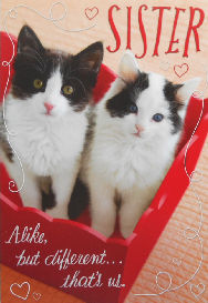 Cat Valentine Card, Sister