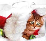 Christmas Gift Bag, Kitten And Ornament