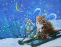 Collectible Cat Christmas Card, Christmas Slide