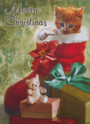 Collectible Cat Christmas Card, Fun Surprises