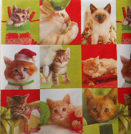 Collectible Christmas Gift Wrap, Kitten Portraits