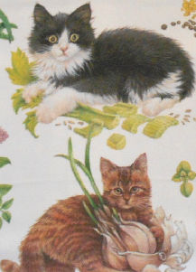 Kitchen Towel, Mixed Kittens