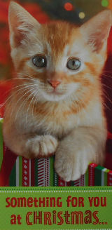 Kitten Cash & Gift Christmas Card, For You