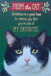Sample, Cat Christmas Card, My Favorite