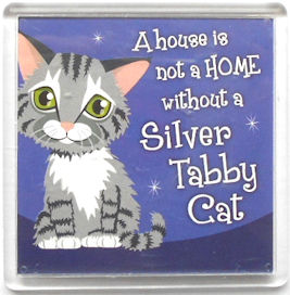Sample, Cat Magnet, Silver Tabby Cat, Home