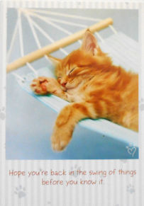 Sample, Cat Get Well Card, Feel Better