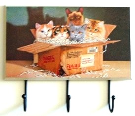 Three Hook Cat Plaque, Fragile, Kittens
