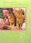 Cat Birthday Card, Little Sister