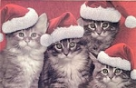 Cat Christmas Card, Purr-fectly Merry Christmas