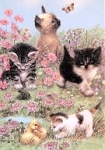 Cat Flag, Meadow Kittens