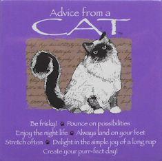 Cat Magnet, Advice From A Cat