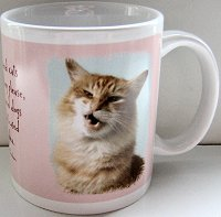 Cat Mug, Women And Cats