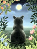 Cat Note Cards, Blank, Black Cat