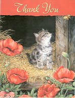 Kitten Note Cards, Blank, Thank You