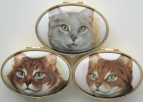 Cat Pill Box, Cat Portraits