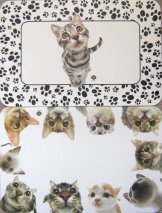 Double Sided Cat Place Mat, In Your Face