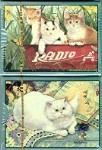 Cat Playing Cards, Persian Cat