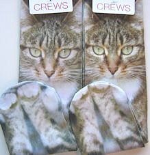 Cat Socks, Looking At You