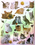 Cat Stickers, 16 Cats And Kittens
