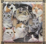 Cat Light Switch Cover-Double, Just Cats