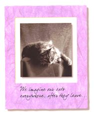 Cat Sympathy Card, After They Leave