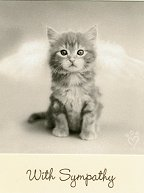 Cat Sympathy Card, Pearly Gates With Kitty Door