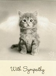 Cat Sympathy Cards, Cat Picture Frames