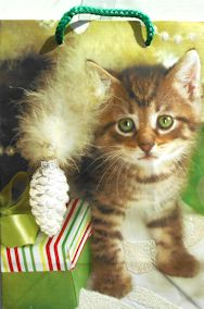 Christmas Gift Bag, Kitten And Gift