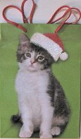 Christmas Gift Bag, Kitten With Santa Hat