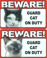 Guard Cat Sign, Tuxedo Or Siamese Cat