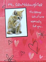 Kitten Valentine Card, Hi Granddaughter
