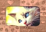 Magnetic Cat Picture Frame, I Love My Cat