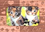 Magnetic Cat Picture Frame, I Love My Cats