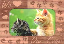 Magnetic Cat Picture Frame, We Love Our Cats