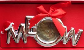 Sample, Cat Christmas Ornament, Meow