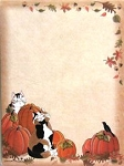 Self Stick Notes, Pumpkin Patch Cats