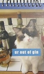 Spiral Cat Note Pad, Ur Out Of Gin