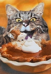 Cat Thanksgiving Card, Cat & Pumpkin Pie