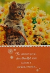 Cat Thanksgiving Card, Thankful Smile